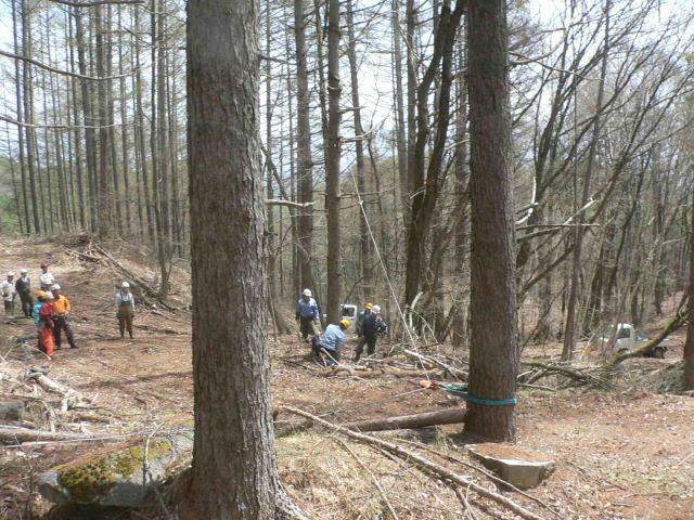 201504182森林整備