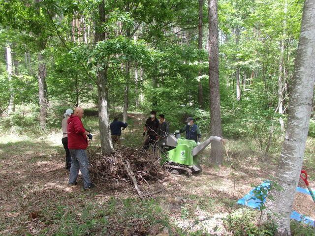 森林療法プログラムI