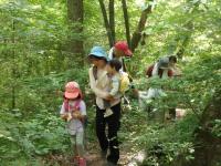 森林療法プログラムⅡ
