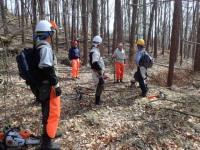 森林整備事業部